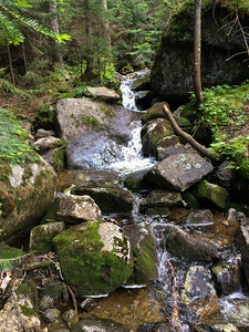 Bradley Pond Shelter is next to this pretty little brook.