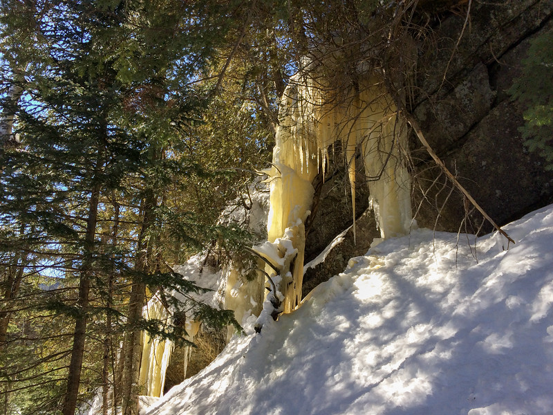Cliffside seeps generate impressive icefalls along the Panther herd path; each is about 10 feet tall.