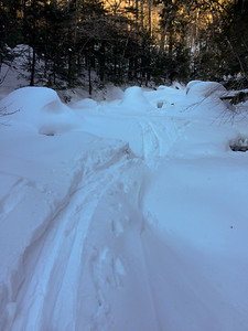 Skiing up Santoni Brook was easier than skiing on the trail.