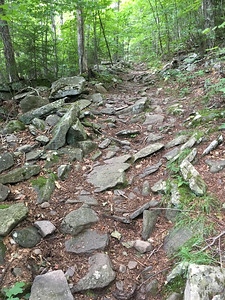 The trail up Hunter Mountain is very steep.