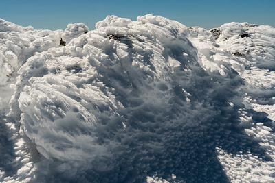Delicate rime-ice feathers on the summit of Mount Moosilauke.