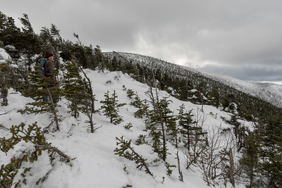Lars examines the terrain, high on the shoulder of North Twin.