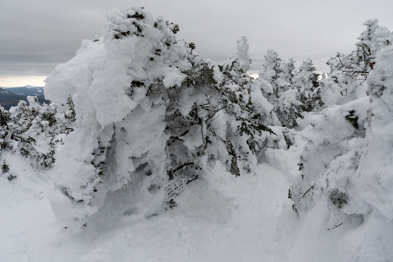 The summit of North Twin, with a sign toward South Twin - note the sign is at ankle level in this snowpack!