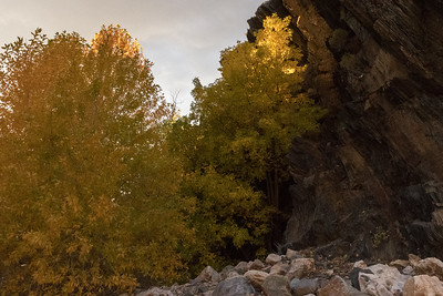 Late afternoon light, late fall colors, Big Cotton Canyon, Utah.