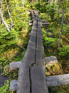 "For an ""unmaintained trail"" to Esther, this is a pretty nice bog bridge."