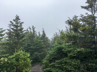 The view from Mount Esther, in the clouds - sigh.