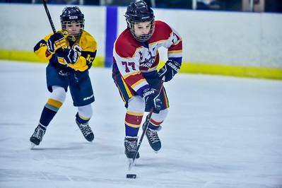 2019 Easton Ice Hawks-13
