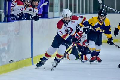 2019 Easton Ice Hawks-4
