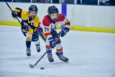 2019 Easton Ice Hawks-11