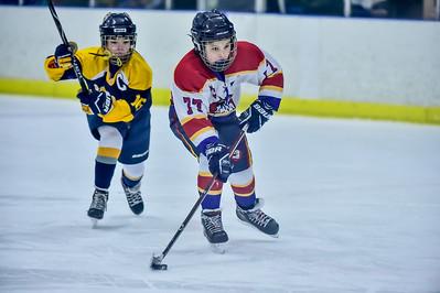 2019 Easton Ice Hawks-12
