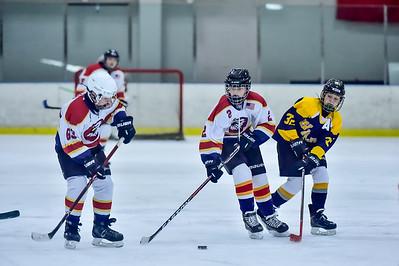 2019 Easton Ice Hawks-7