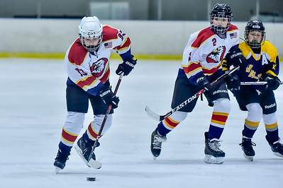 2019 Easton Ice Hawks-8