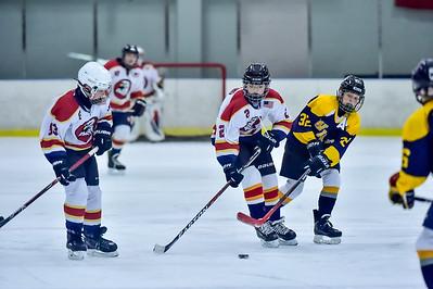 2019 Easton Ice Hawks-6