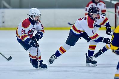 2019 Easton Ice Hawks-5
