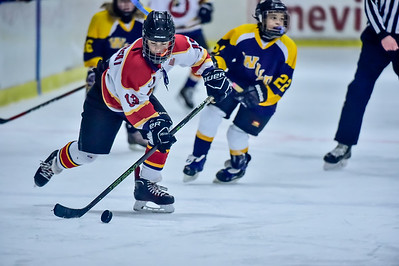2019 Easton Ice Hawks-2