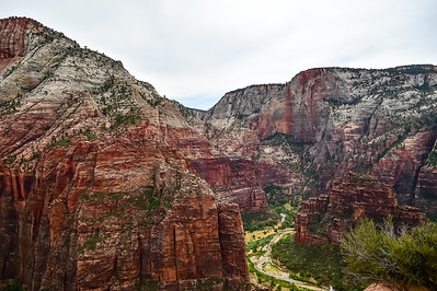 2019 Grand Canyon-19