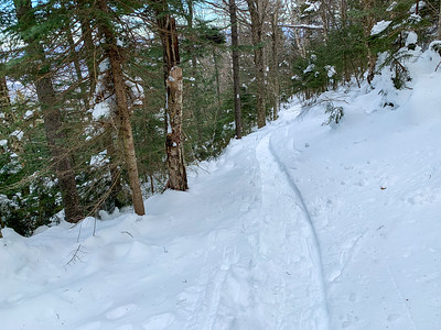 Tracks in deep snow on Mount Ascutney's Windsor Trail.