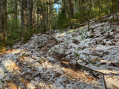 A light dusting of snow along the high portion of the trail up Black Mountain, NH.