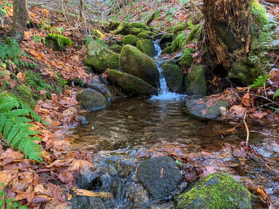 A pretty brook crossing on the Glencliff Trail, Mount Moosilauke.