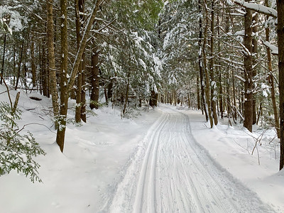 Cross-country skiing on the downtown trails in Lyme.