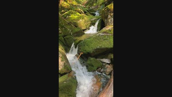 A pretty cascade along Gorge Brook.