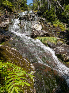 The largest cascade along Gorge Brook.