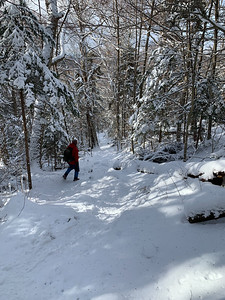 Kathy descending the Glencliff trail in beautiful snowy conditions.