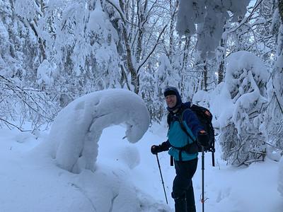 David notes how the recent deep snow has bent young fir trees fully over. Photo by Ken Kaliski.