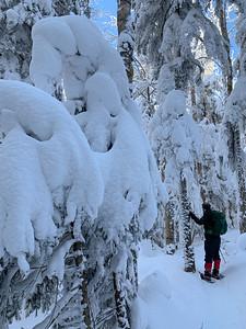 Deep, fresh snow on the trail up Pico Peak.