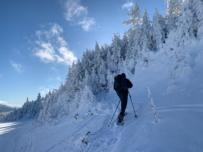 The trail up Pico Peak crosses an access road and dives back into the woods in deep snow. Photo by Ken Kaliski.