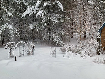 Our back patio area, seen early in a snowstorm.