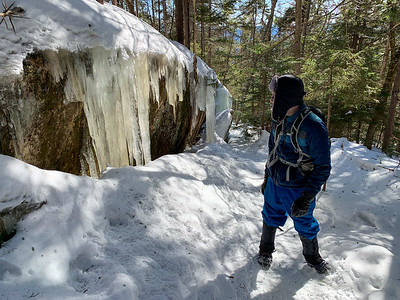 Andy examines the icicles from springs that flow off the granite shield on Mount Dickey, White Mountains of NH.