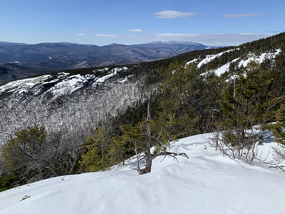 View of Mount Moosilauke from Mount Welch, White Mountains of NH.