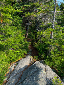 The trail continues onward toward Mount Putnam and Stowe Pinnacle.