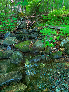 A pretty side stream at Worcester Mountain.