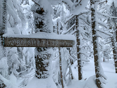 It was gratifying to reach this signpost near the summit of Worcester Mountain, as it confirmed I was indeed still on the trail. Vermont.