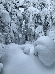 After passing the end of the broken trail, my own path leads through deep, unbroken snow. Worcester Mountain, Vermont.