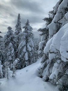 The first views emerge as we ascend among snow-covered first high on the trail to Worcester Mountain, Vermont.