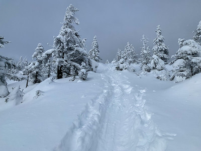 The final sections of the trail to Worcester Mountain are steep and climb through mixed terrain, buried deep in powder. Vermont.