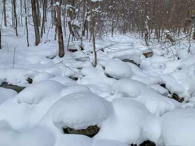 A streambed reminds me of pillows - along the trail to Worcester Mountain, Vermont.