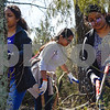 Seenu Raju, Kaivalya Gudooru and Karthika Venugopalan trim limbs at Mercy Ships' headquarters in Garden Valley, Texas, on Wednesday, March 14, 2018. The students volunteering are part of a group of about one hundred taking part in the Alternative Spring Break program offered by UT Dallas, which helps students learn leadership skills and focuses on social issues.  (Chelsea Purgahn/Tyler Morning Telegraph)