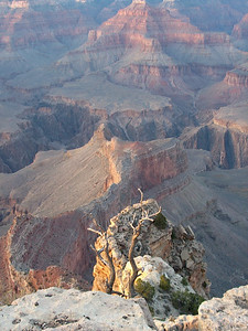 Grand Canyon at dusk