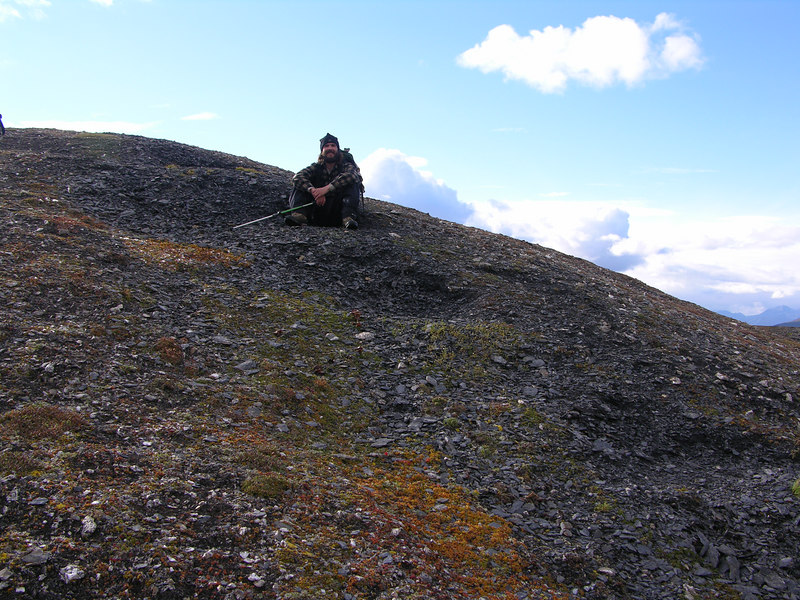 Ian trying out a dall sheep bedding site, a sheep campground if you will. We decided to stick with our tent …