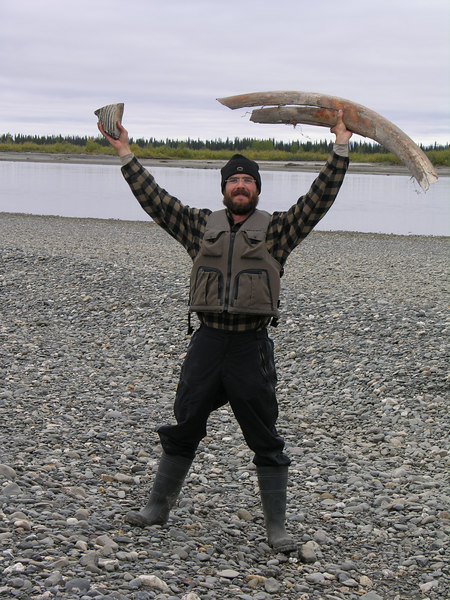 Another contribution that Ricky Ashby made to our trip was a suggestion of where to look for mammoth tusks downriver from Noatak Village.  After stopping at a few potential sites, Ian finally found the right spot.  In Ian's triumphant right hand he holds a nearly complete mammoth tooth and in his left is a large mammoth tusk fragment.  Very nice specimens indeed and what a find!