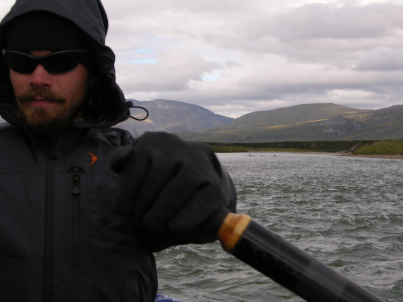Note crossing caribou over Trystan's left shoulder.  Caribou are very good swimmers, with hollow hair that keeps them buoyant and hoofs like paddles. They appear not to give a second thought to such feats as crossing the Noatak and other large rivers of the Arctic.