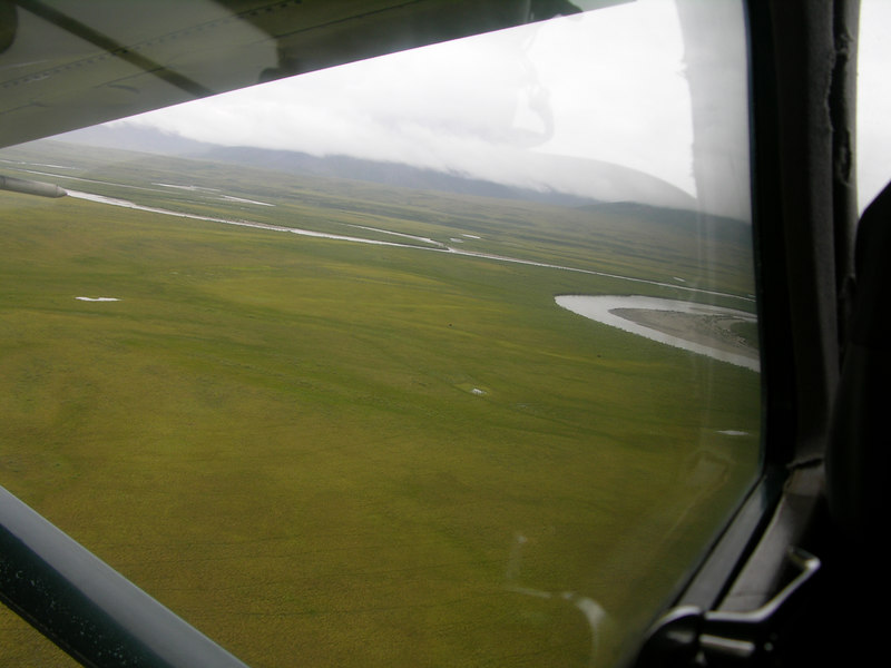 Although it may be hard to see in the photo, Eric swung the plane around so we could get a closer look at three muskoxen (small black dots) on the floodplain.  Much more on this later…