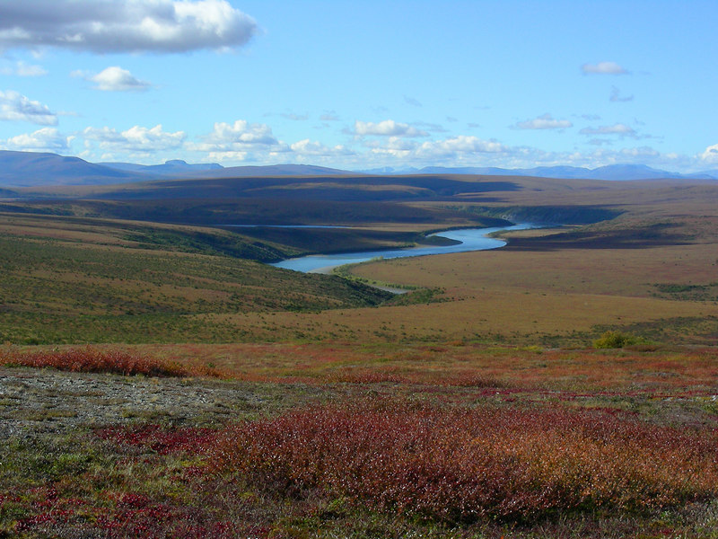 A look across this mountainous region called the Grand Canyon of the Noatak.  Although nothing about this portion of the river even resembled a canyon, it was nevertheless a beautiful setting and a welcome change from the flat middle portion of the river that we had been navigating for the past several days.