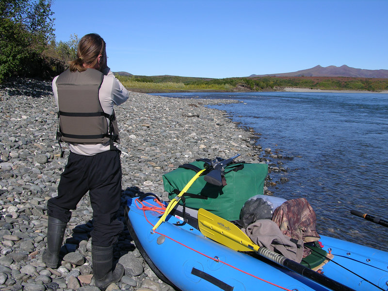 "After thoroughly investigating the spruce trees we shoved off to continue floating downriver while keeping our eyes peeled for caribou.  A powerboat of native hunters had just blasted by prior to our embarking and we wondered if they would find the animals we had seen further upriver.  About 10 feet from shore Ian quickly said ""Back to the bank!""  Looking downriver we saw a caribou bull halfway across the river about 300 yards away.  We beached the craft, unpacked the boat in order to grab the rifle, and within 45 seconds were hurriedly making our way towards the bull's landing site.  We were not sure which way the bull would head after his crossing but the 20-yard wide gravel bar was likely were he would travel for a bit as thick alders were above the gravel bar.  About a minute later Ian pointed at the bull: he was a few feet back in the alder, but less than 20 yards away!  For what seemed like an eternity man and caribou stared each other.  Trystan waited for the shot while Ian tried to get an unobstructed view of the vitals.  Moments later the bull broke the silence before Ian could take an ethical shot.  The bull began heading upriver right towards our boat, which made a shot in that direction a very poor choice.  Ian engaged the safety and we once again were chasing the bull.  Caribou are amazingly fast critters.  They walk about as fast as humans jog and the bull was leaving us behind quickly.  The bull passed by our boat where we had been just minutes before and by the time we reached our raft he was a couple hundred yards beyond our craft.  Trystan ran up to the boat and slapped the top of the load piled up on the bow of the boat.  Ian dropped on one knee, shouldered his rifle, and steadied his left arm on the boat's load.  A second later the shot rang out from Ian's .300 WinMag and a 220 yard shot resulted in a quick, humane harvest!  In less than three or so minutes we had transitioned from being somewhat dejected and disheartened to rejoicing in this wonderful turn of events which turned our river float trip into a successful float hunting trip.  In this photo the downed caribou lies above the rifle on the far, grassy but dark colored riverbank."