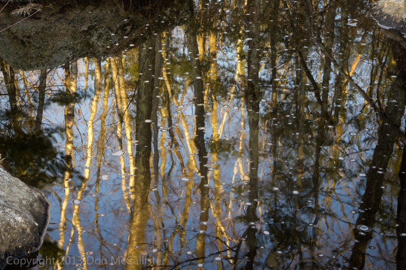 Late winter, early morning reflections