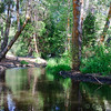 Santa Ana River, Big Bear